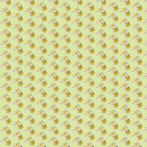 frangipani006