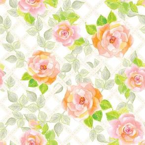 Wild Roses ~ alexcolombo.com