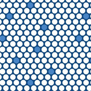 White & Blue Dots