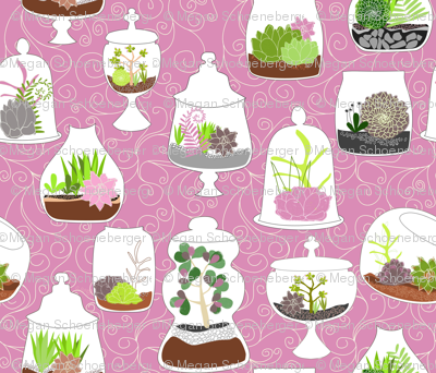 So Many Terrariums, So little Time