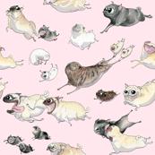 Pink Pugs on the Run