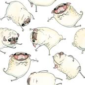 Funny Dancing Pugs