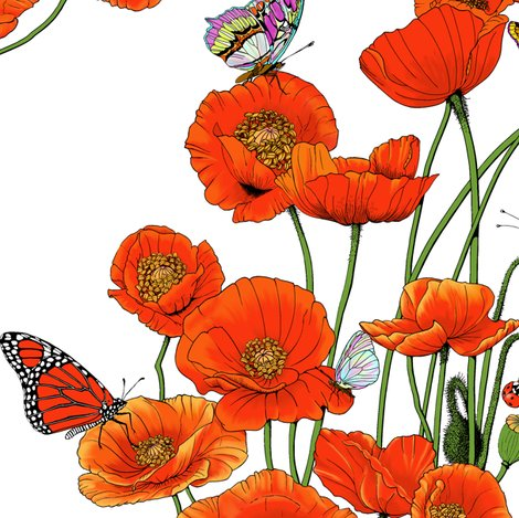 Orange_poppies_on_white_shop_preview