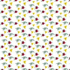 Tulips_on_white