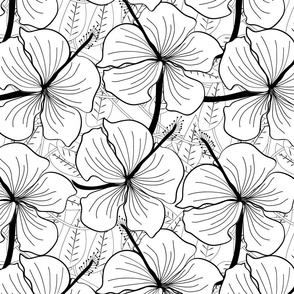 hibiscus_black_and_white