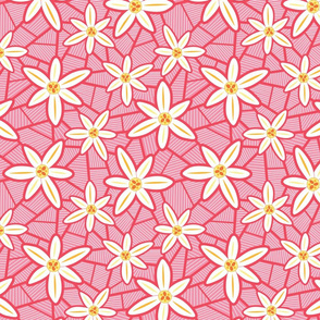 Lilies Pink