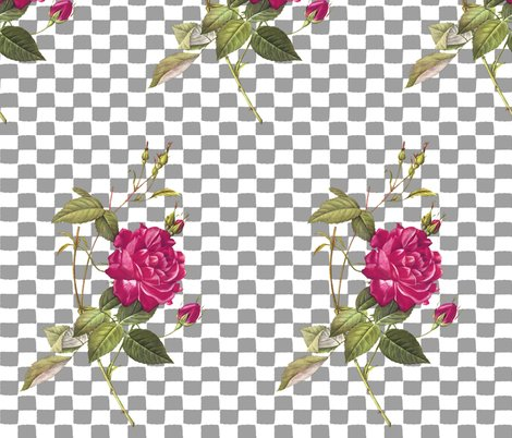Rose_with_a_checkered_past_grey_shop_preview