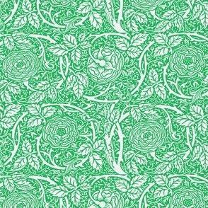 Green Summer Roses
