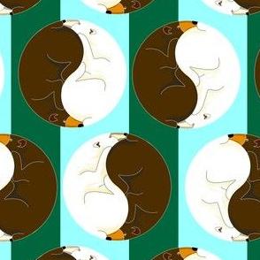 Yin Yang Bears 2