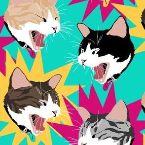 Big Yawn Bold Color