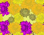 Paper_daisys_yard_reva_thumb