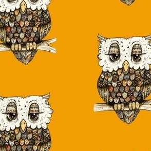 Owl with Orange Background