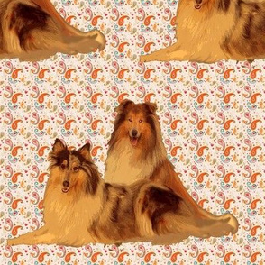 rough_collies