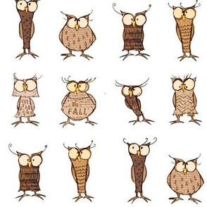 Owl shapes and sizes