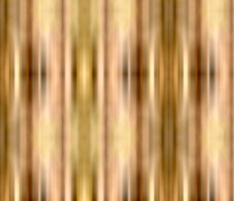 Pampas Grass Blur