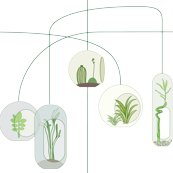Rterrarium_white.eps_shop_thumb