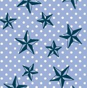 cornflower stars