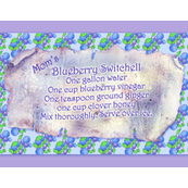 Mom's Blueberry_Switchell