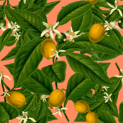 Lemon Botanical ~ Kiss Me, Hardy!