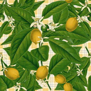 Lemon_Botanical___Provence_Plaid___Peacoquette_Designs___Ciopyright_2014
