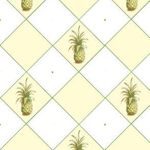 Harlequin Pineapple