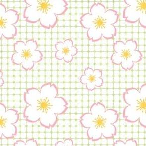 Sakura - pink on blue checker