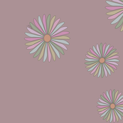Multi-Coloured Daisy Spot on Pink