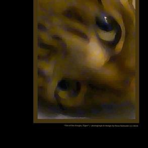 Cat_of_the_Jungle__Tiger_II