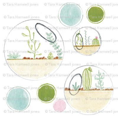Terrarium spots