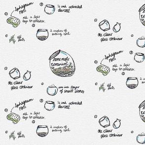 Homemade_terrarium-p1__1__copia