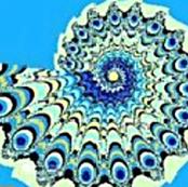 Peacock_Nautilus_Fractal-ed
