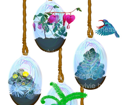 Rrrrrrrrrbeautiful_terrariums__comment_445626_preview