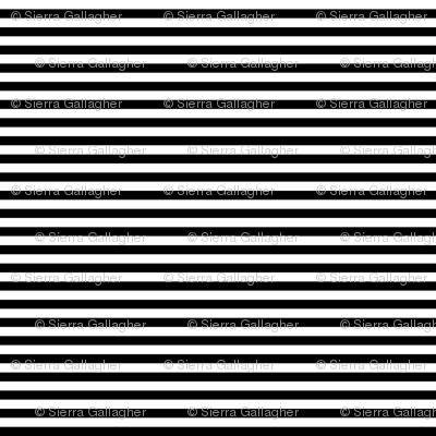 Black Stripes 1/2 Inch Horizontal