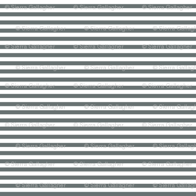 Shadow Stripes 1/2 Inch Horizontal