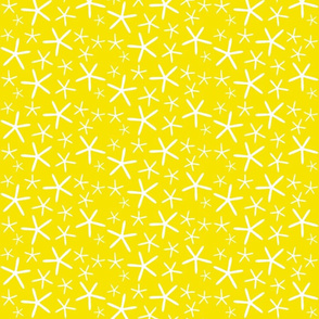 Yellow Star Fish