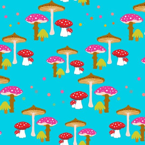 Magic Mushrooms II