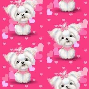 Maltese Pink Hearts