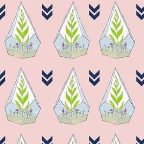 Terrariums in Pink by Debbie Porter