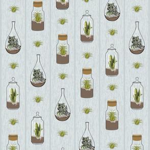 terrarium_woodgrain