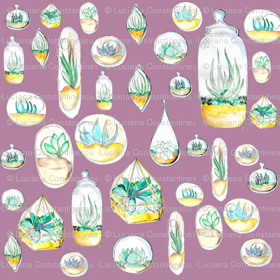 floating-terrarium-garden_sizes_mauve
