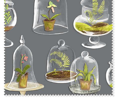 Rterrarium_comment_445748_preview