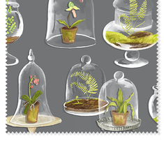 Rterrarium_comment_445748_thumb