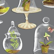 Rterrarium_shop_thumb