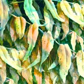 Rwatercolor_leaves_susanjohnson_shop_thumb