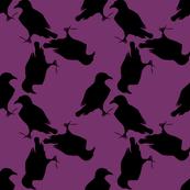 Purple Raven