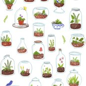 Rrterrariums_shop_thumb