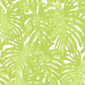 Balmy, Pale Green