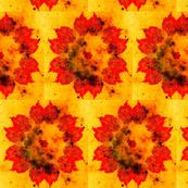 redgold leaf mandala splat