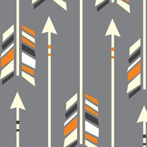Large Arrows: Orange Appeal