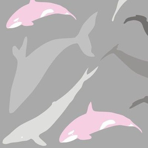Whale shade of grey and pink